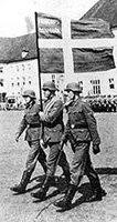 Vojáci Freikorps Danmark