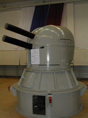 AK-630M1-2 Roj