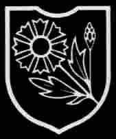 22. SS Freiwilligen Kavallerie Division Maria Theresa