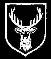 31. SS Freiwilligen Grenadier Division